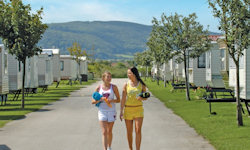 A view of the static caravans at Ty Mawr Holiday Park